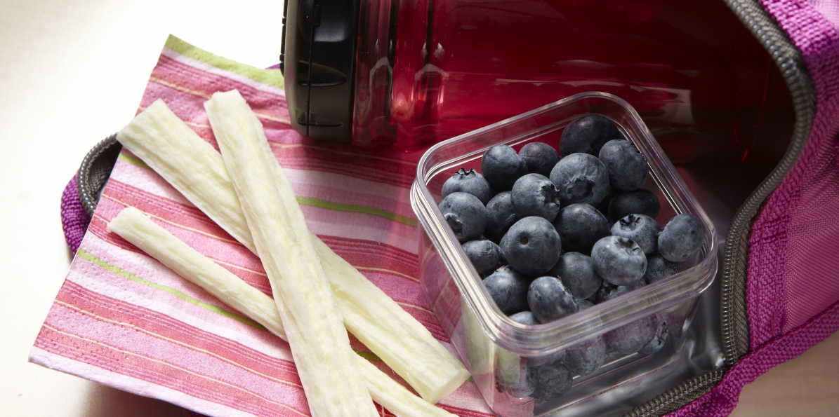 Blueberry String Snack